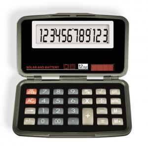 6029 12-Digit Calculator
