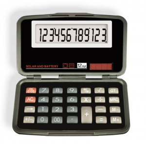 6029 12-Digit Calculator